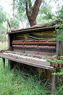 Intricate insides of a uined piano.