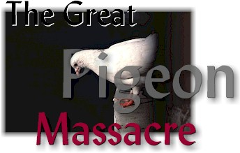 The Great Pigeon Massacre, by Vicki Lindner